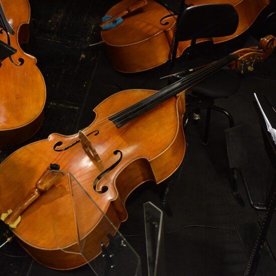 Ecole musique Lille cours instrument contrebasse